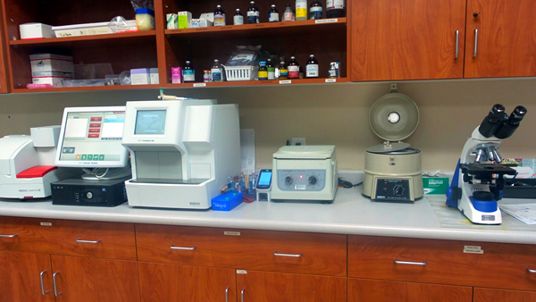 Diagnostic Laboratory at our Vet Clinic in CA - Fresno, Sanger, Clovis, 93611