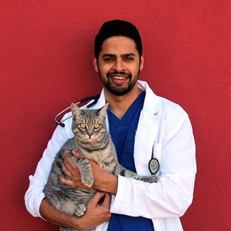 Dr. Bachint Bir Singh